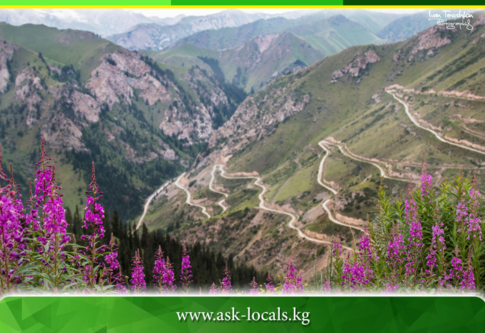 Amazing Mountain passes in Kyrgyzstan